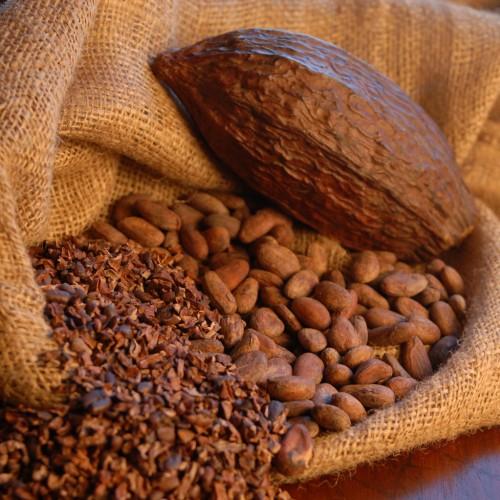 Fave cacao Rizzati